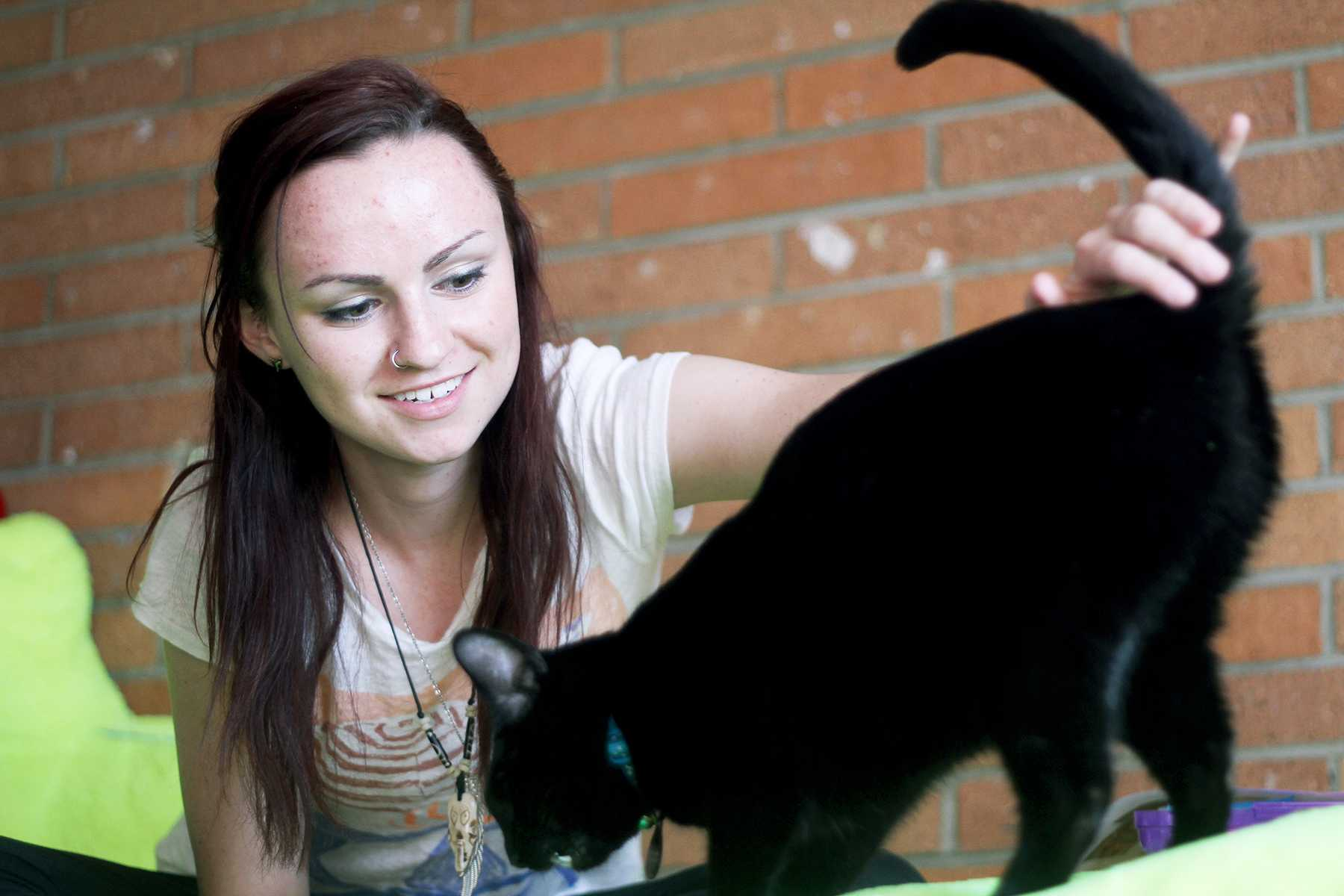 First Year student Erica Koch gives her companion kitty, Pine, some treats Monday afternoon. Koch adopted Pine from the Fort Collins Cat Rescue.