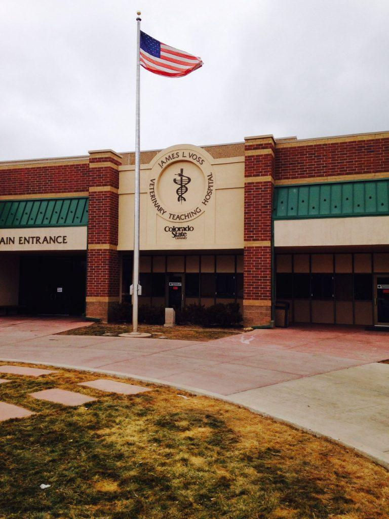 CSU's Veterinary Teaching Hospital. Photo credit Dixie Crowe