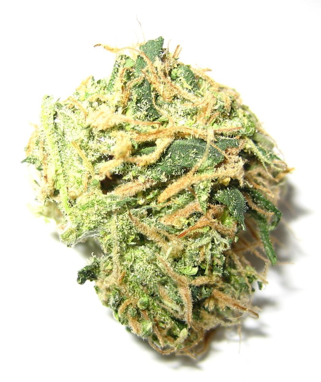 Marijuana_small