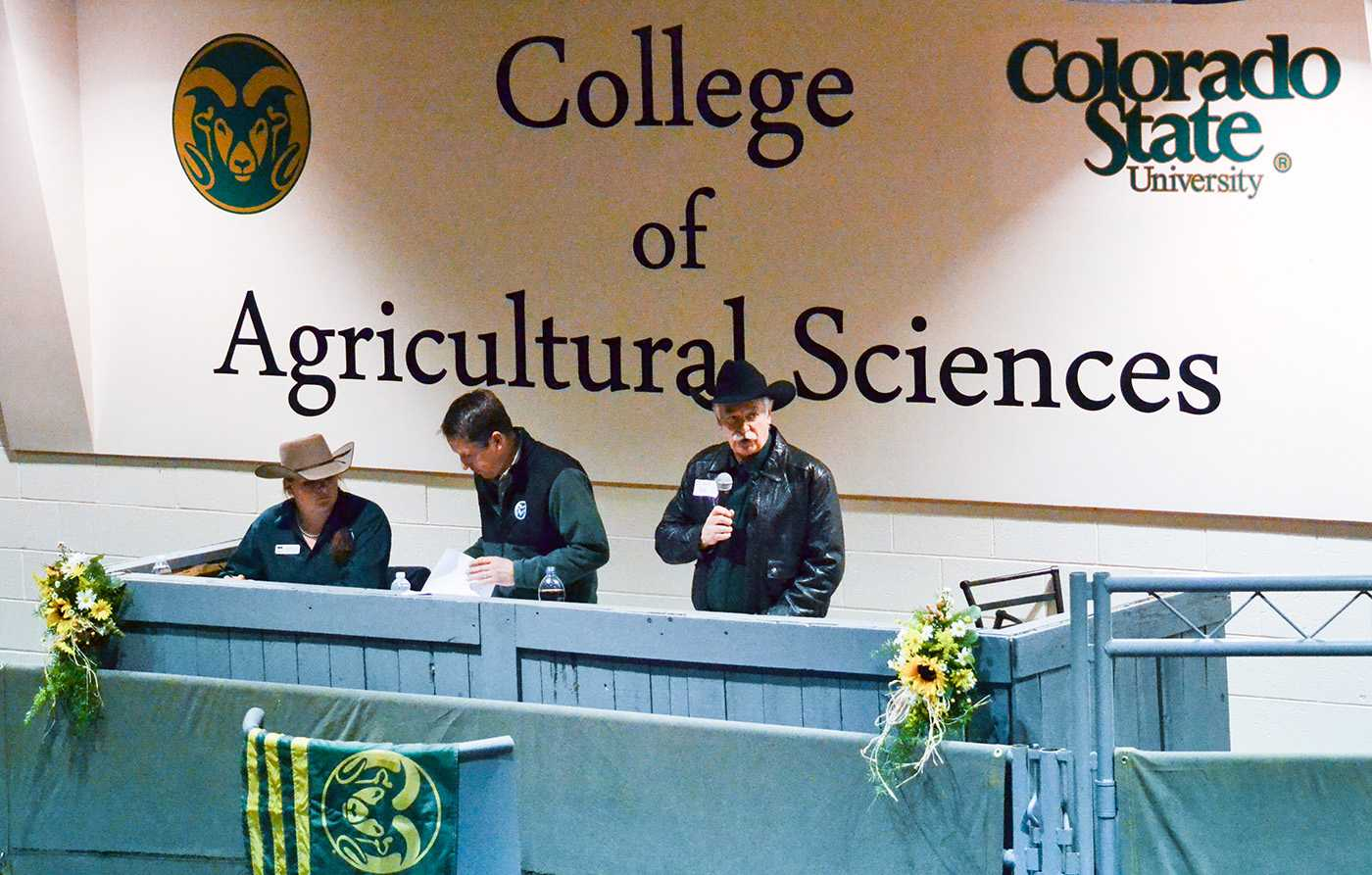 Dr. Kevin Pond, Head of the Animal Sciences Department, welcomed buyers and spectators to CSU's 38th Annual Bull Sale. Photo credit Dixie Crowe.