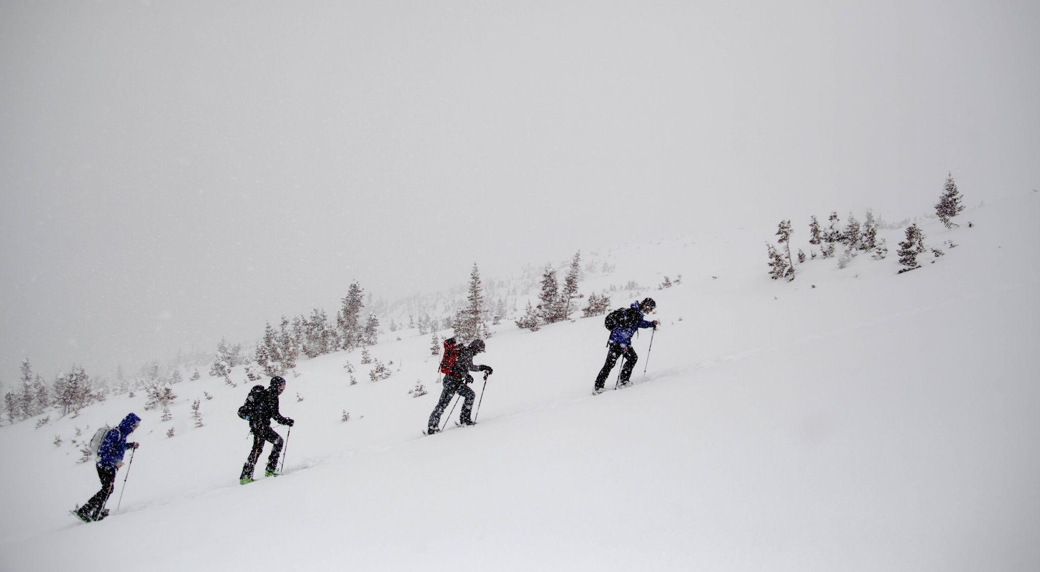 Skiers and boarders earning their turns on the upper slopes of Hidden Valley.  (Photo by: Nevin Fowler)