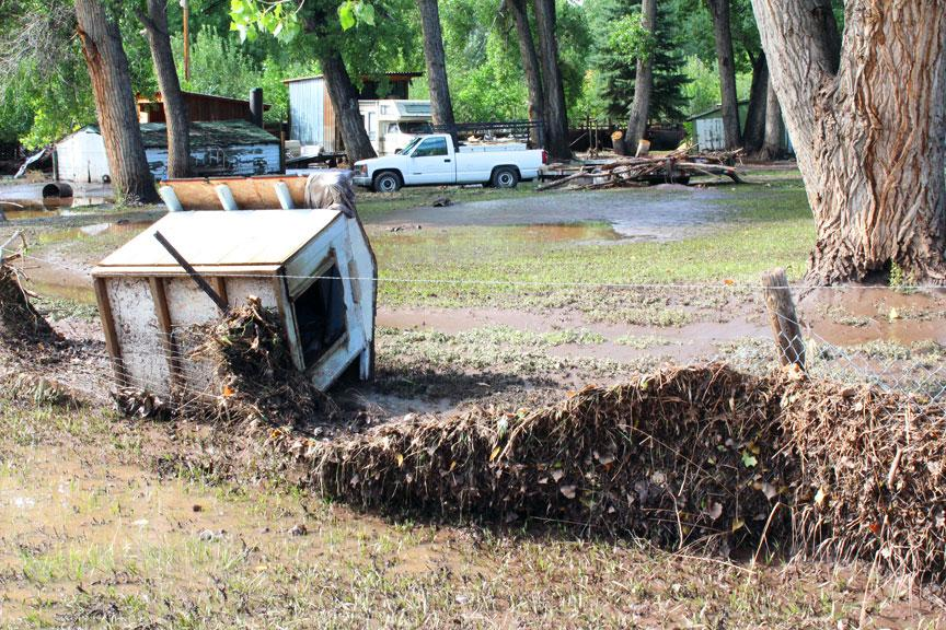 Flood debris is caught in a fence and a dog house is overturned by the flood in a yard on West County Road 24.