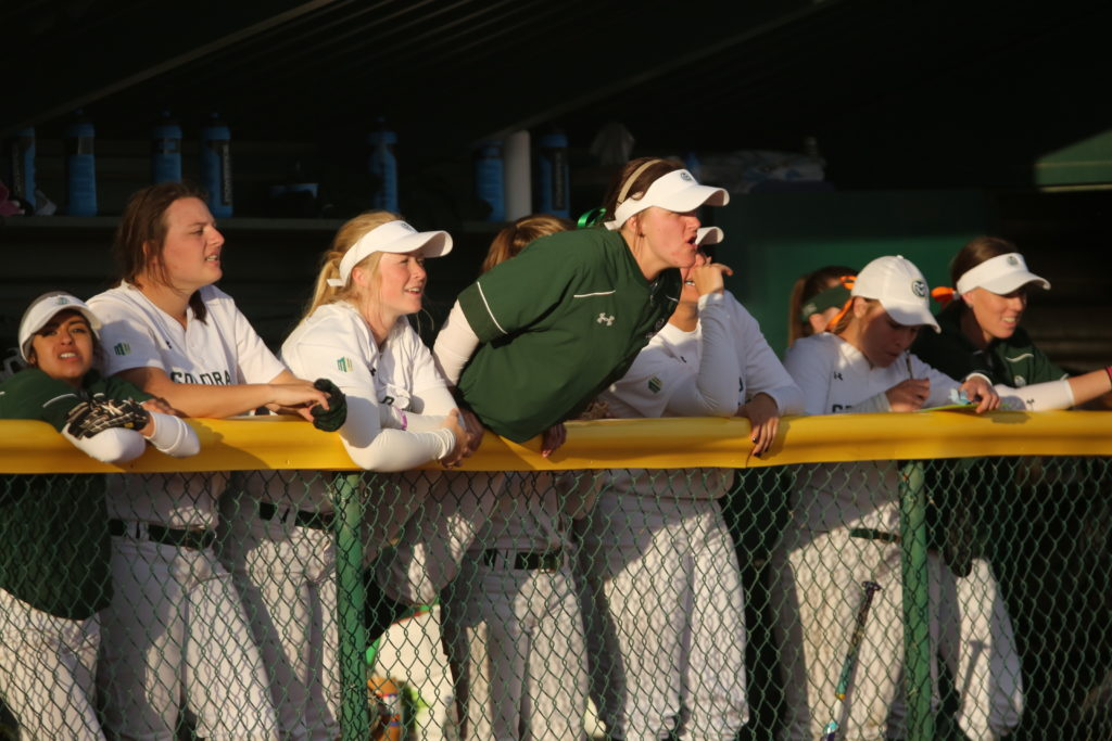 The Colorado State University softball team cheers from the dugout during a game against Penn State on Friday, March 3rd at Colorado State University. CSU beat Penn State 4-0. (Forrest Czarnecki | Collegian)