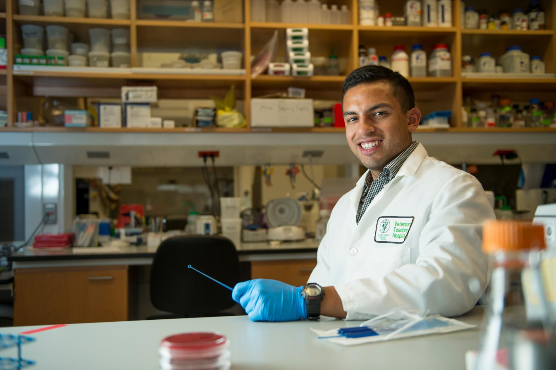 Graduate student receives fellowship to continue research in microbes