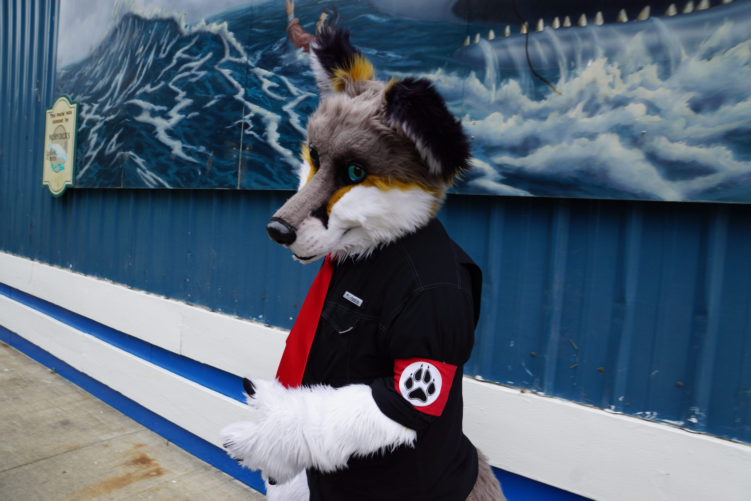 Furries in Fort Collins respond to alt-right allegations