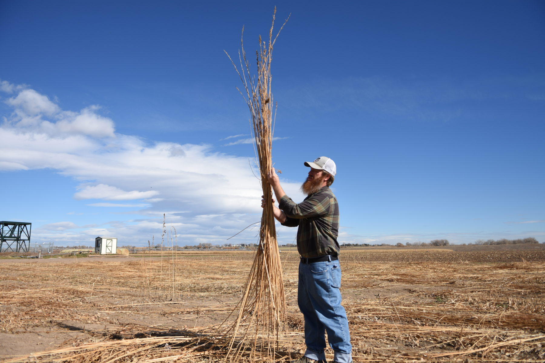 CSU partners in research project about rural sustainability – The Rocky Mountain Collegian - Rocky Mountain Collegian