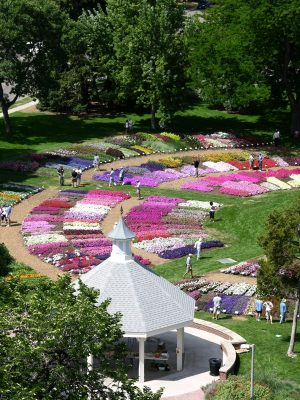 A view of the Annual Flower Trial Gardens